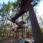 Wyjazd do Holandii na budowanie domków na drzewach – relacja