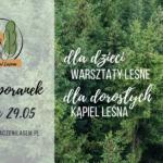Zapraszamy na wiosenne aktywności Leśnych Spacerów Rozwojowych